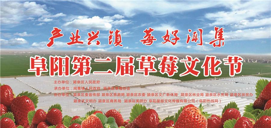 直播:阜阳第二届草莓文化节