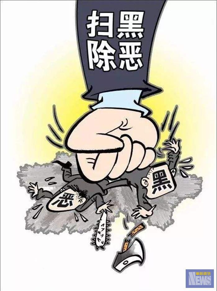 <strong>阜阳市召开落实省移交问题整改暨市扫黑除恶专项斗争领导小组会议</strong>